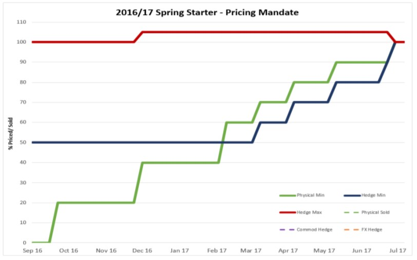 Spring Starter pricing mandate
