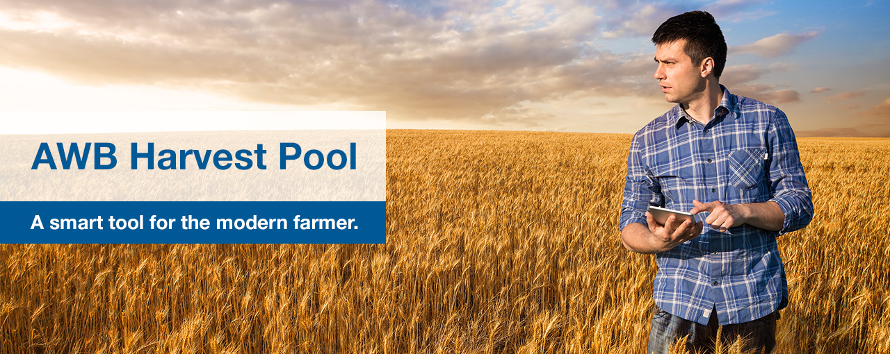 Harvest pool hero image_1819