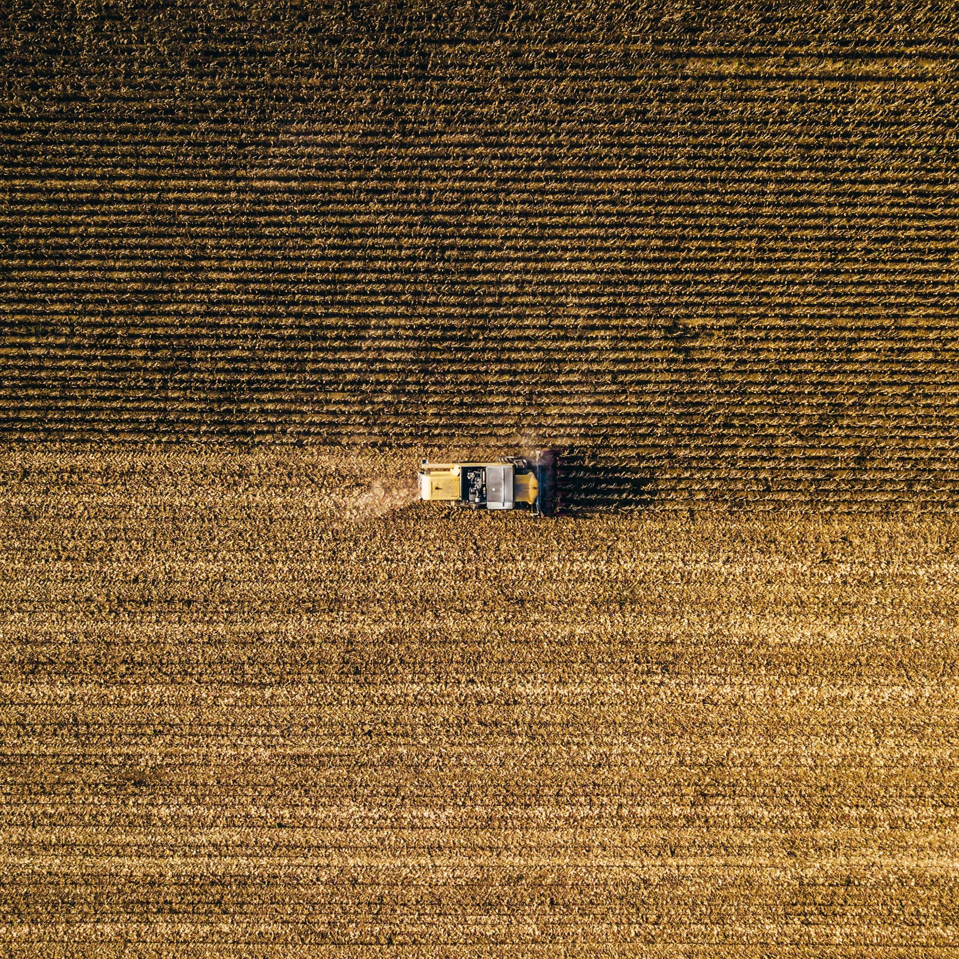 Grain_Markets_05052021